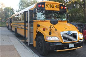 School buses in line, waiting for students